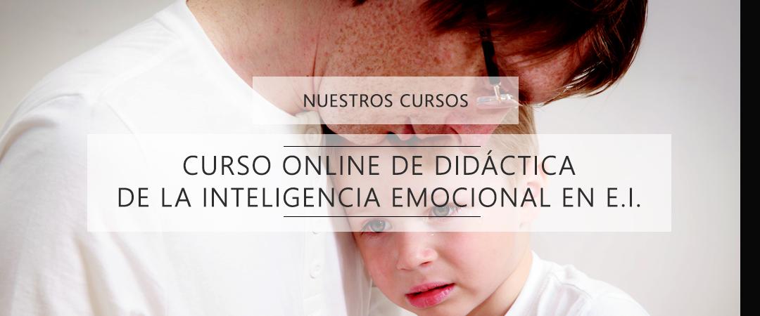 didactica de la inteligencia emocional